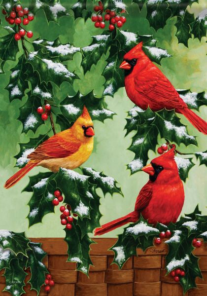 HOLLY & CARDINALS