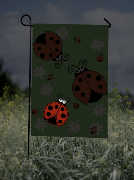 LIGHT UP LADYBUG