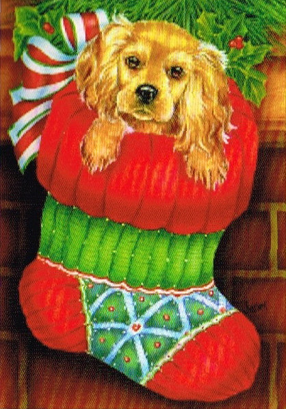 PUPPY IN STOCKING