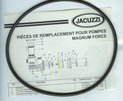 PUMP O'RING JACUZZI 47036447