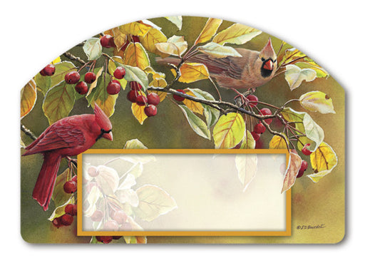 CARDINAL AFTERNOON MAGNETIC ADDRESS