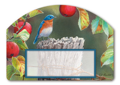 ORCHARD BLUEBIRD MAGNETIC ADDRESS