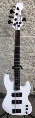 GAMMA Custom H519-02, Kappa Model 5 String, Polar White