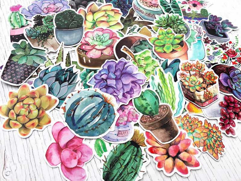 Illustrated Plant Sticker