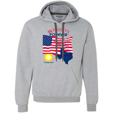 G925 Gildan Heavyweight Pullover Fleece Sweatshirt-Houston-Unisex