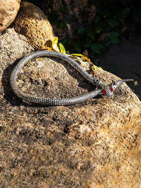 The Serpentine Choker in Antique Silver resting on top of a rock.