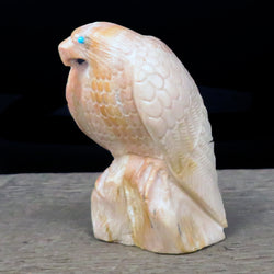 Native American Zuni Fetish Carving-Large Dolomite INTROSPECTIVE EAGLE-Spirit Animal-Derrick Kaamasee