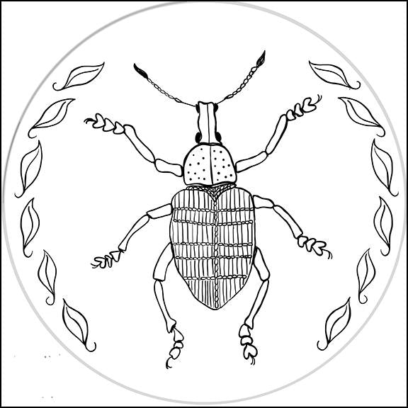 LK - All Bugged Out - Weevil