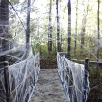 Spider Web 40g with Spiders White Webbing for Halloween Decorations
