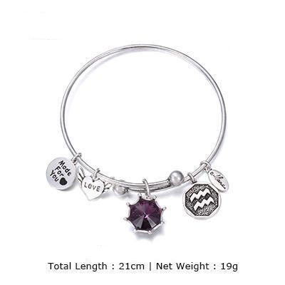 Image of Birthstone Twelve Constellations Fine Bangles February / Silver e-Manco Official Store