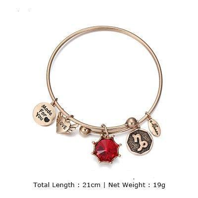 Birthstone Twelve Constellations Fine Bangles January / Silver e-Manco Official Store