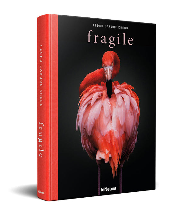 'Fragile' by Pedro Jarque Krebs