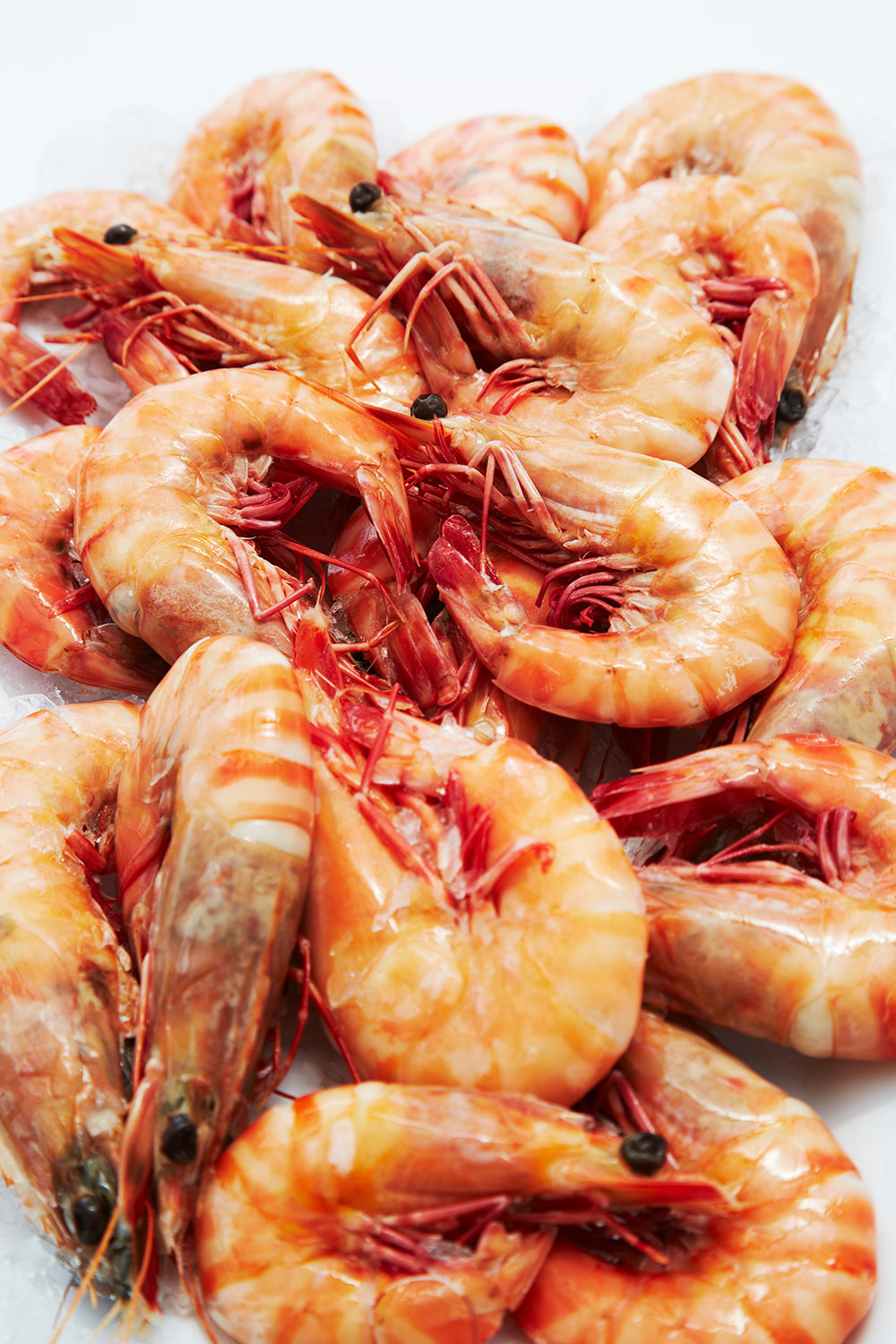 Tiger Prawns Whole Cooked XL Australian