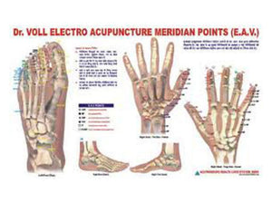 Chart E.A.V. for Educational Academics Teaching New Meridian Points Acupuncture