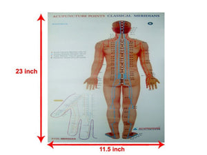 Set of 3 Acupuncture Points Chart Meridians Educational Very Useful Chart
