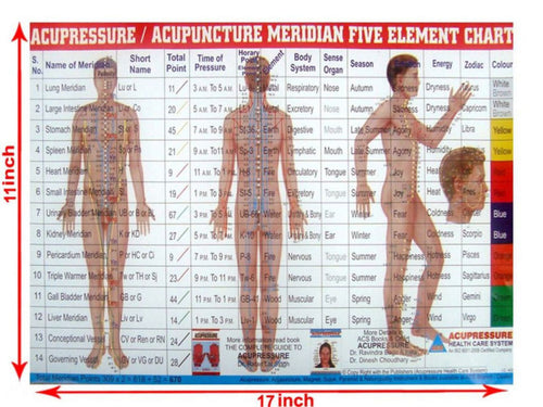 Meridian Panch Tatvha Five Element Chart-Study Academics Teaching Educational