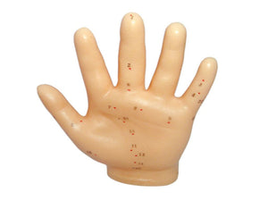 Acupuncture Novel Human Hand Model Sculpture Expert Medical Teaching