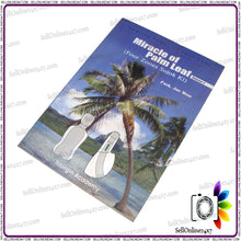 Volume 2 Four Miracle of Palm Leaf Zones Sujok Ki Healing Power of palm Leaf