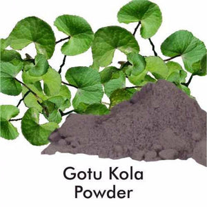 Herbal Hills Gotu Kola Powder 1Kg For Improves Mental Ability