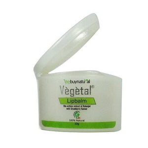 Ayurvedic Vegetal Lip Balm - For Dry And Chapped Lips – 10 Gms