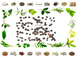 100% Pure Raw Herb Vavding - Embelia Ribes Natural Ayurveda Jadi Buti Health Care Available at BuyIndianProducts24x7.com