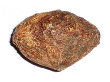 100% Pure Raw Herbs - Ghelphal - Emetic nut - Natural Ayurveda Jadi Buti Health Care Available at BuyIndianProducts24x7.com