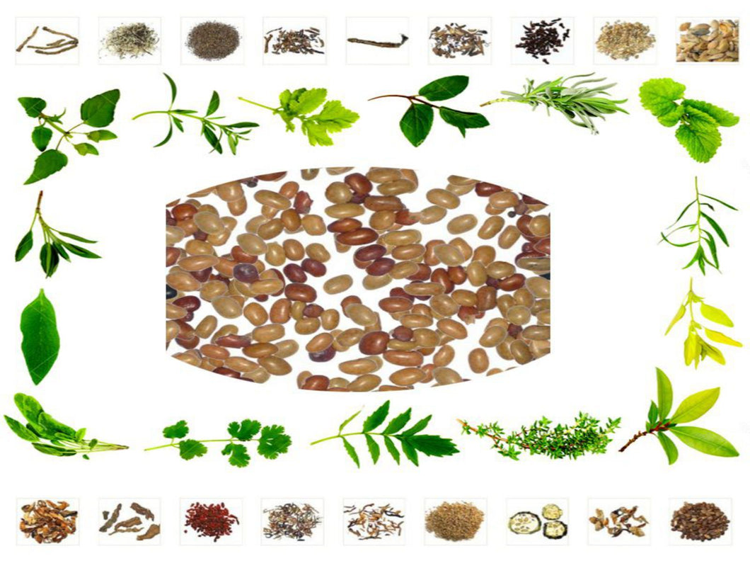 100% Pure and Natural Raw Herb Kulathi - DOLICHOS BIFLORUS Ayurvedic Jadi Buti Available at BuyIndianProducts24x7.com