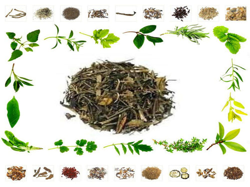 100% Organic Raw Herb Bhui Neem - Andrographis paniculata Pure and Natural Ayurvedic Jadi Buti Available at BuyIndianProducts24x7.com