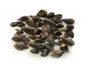 100% Natural Raw Herb Salab Gatta - Salam Gattha - Orchis Spp. Organic and Pure Ayurvedic Jadi Buti Available at BuyIndianProducts24x7.com