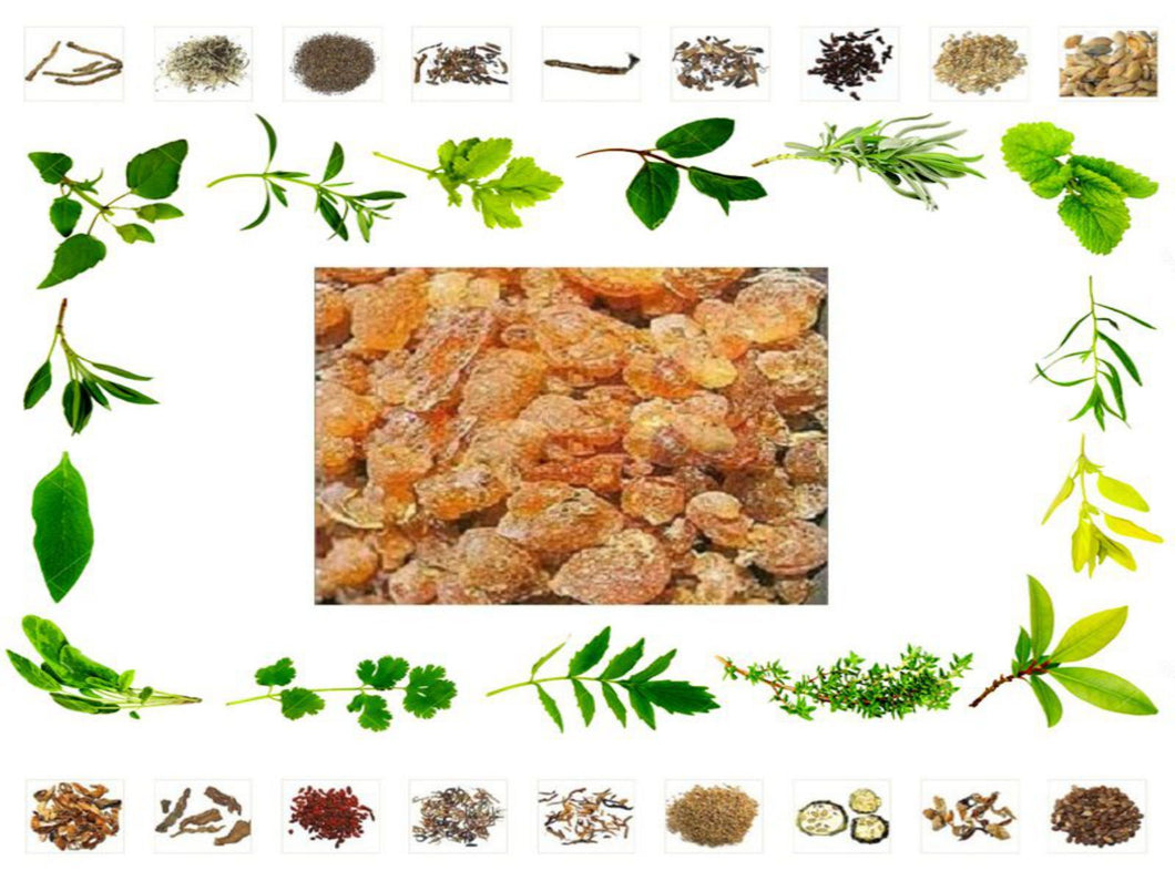 100% Organic Raw Herb Babul Gum - Vachellia nilotica Gum Pure And Natural Ayurvedic Jadi Buti Available at BuyIndianProducts24x7.com