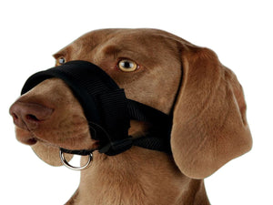 Pet Care Trixie Nylon Muzzle Loop for Dogs- XL