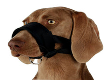 Pet Care Trixie Nylon Muzzle Loop for Dogs- XL Available