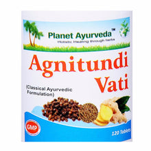 Planet Ayurveda Agnitundi Vati 120 Tablets For Healthy Digestive System 150 gms