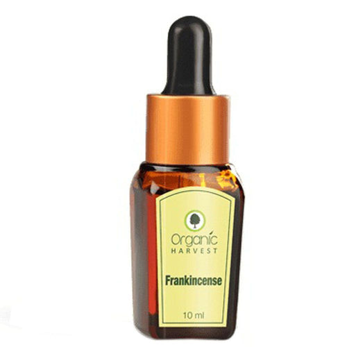 Organic Harvest Frankincense Essential Oil - 10ml Available at BuyIndianProducts24x7.com