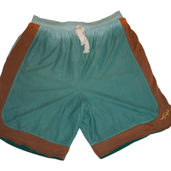 Aquaman Mesh Short