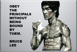 Bruce Lee Macbook Decal