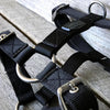 Rogue Royalty Dog Harness SupaTuff Slimline