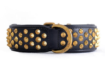 Dog Collar - Ruthless Black Leather & Brass