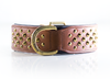 "Brown & Brass Leather Dog Collar - Rogue ""RuffNeck"" Studded Collar"