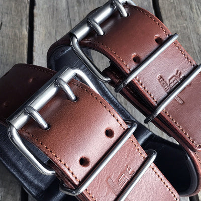 "Brown Leather Dog Collar - Rogue ""RuffNeck"" Studded Collar"