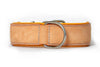 Leather Dog Collars - Classic Buckskin