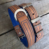 Dog Collar - Tuscan Rogue Tan|Blue