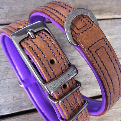 Dog Collar - Tuscan Rogue Tan|Purple