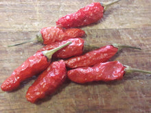 TRUE AFRICAN BIRDSEYE CHILLIES X 15 SEEDS