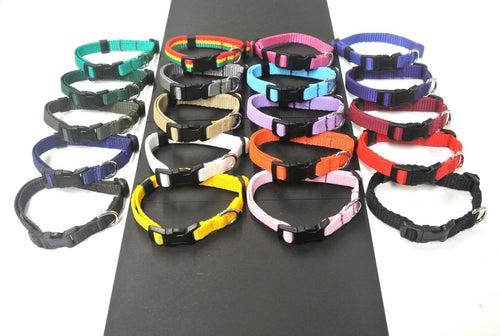 Adjustable Dog Puppy Collars 13mm Wide In Various Colours X Small And Small