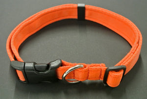 Adjustable dog collars small medium and large in orange