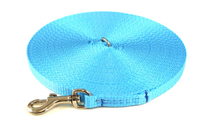 20ft Dog And Puppy Training Lead 13mm Webbing In Sky Blue
