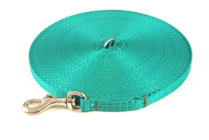 Dog and puppy training lead in 50ft emerald green