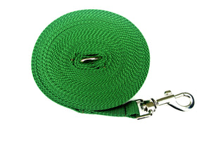 Dog training lead in green