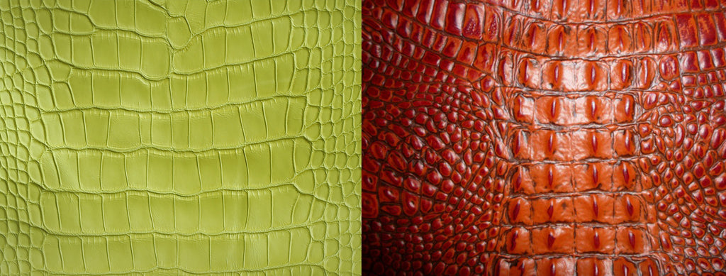 b2bfc53dec Alligator vs Crocodile Leather  How to Differentiate